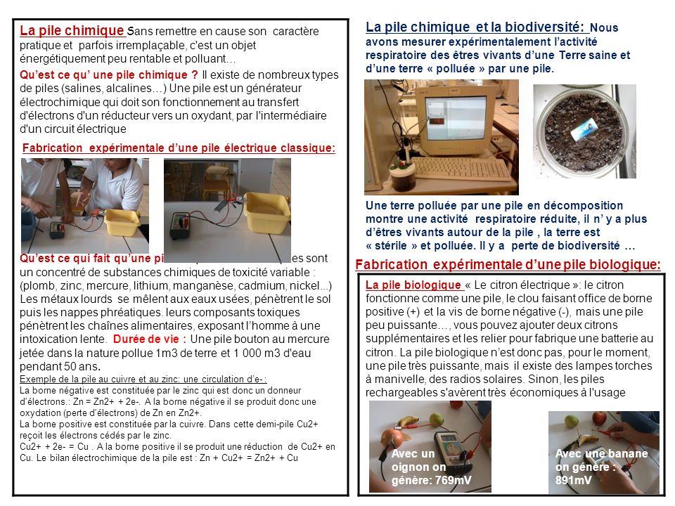 Fabrication expérimentale d'une pile biologique: