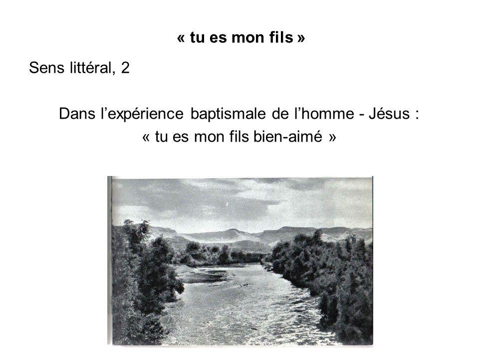 Dans l'expérience baptismale de l'homme - Jésus :
