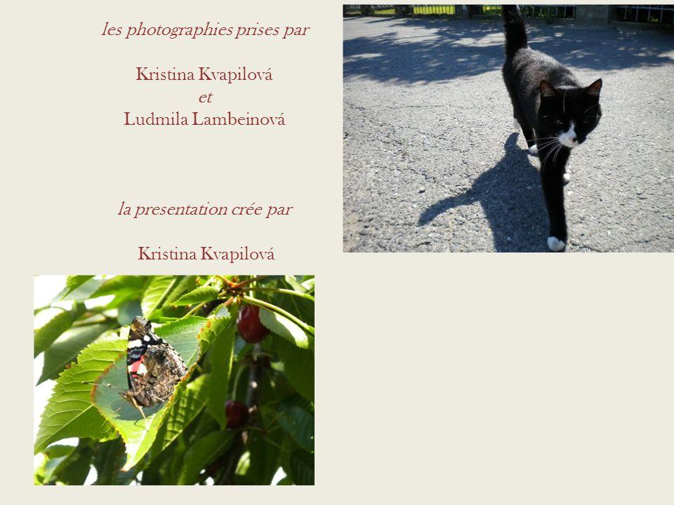 les photographies prises par Kristina Kvapilová et Ludmila Lambeinová