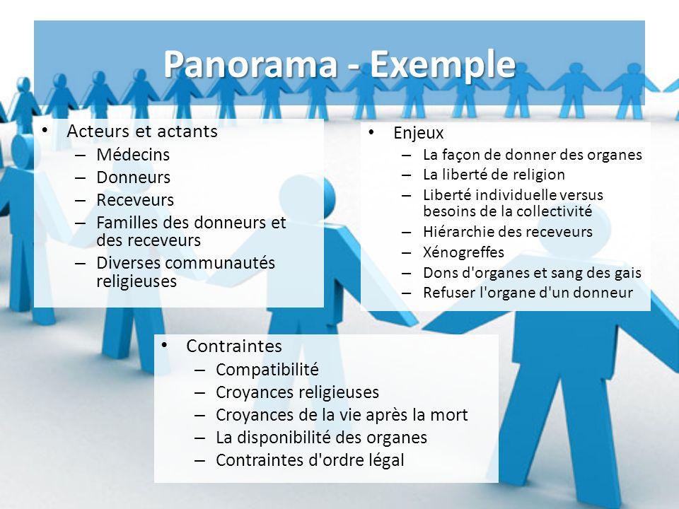 Panorama - Exemple Acteurs et actants Contraintes Enjeux Médecins