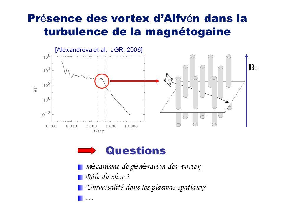 Présence des vortex d'Alfvén dans la turbulence de la magnétogaine