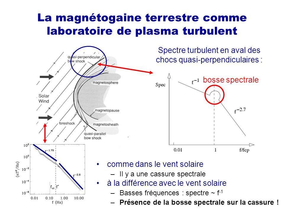 La magnétogaine terrestre comme laboratoire de plasma turbulent