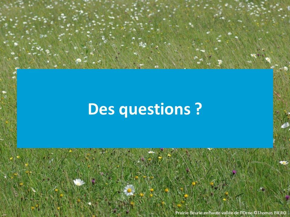 Des questions Temps de réponse aux questions et de débat