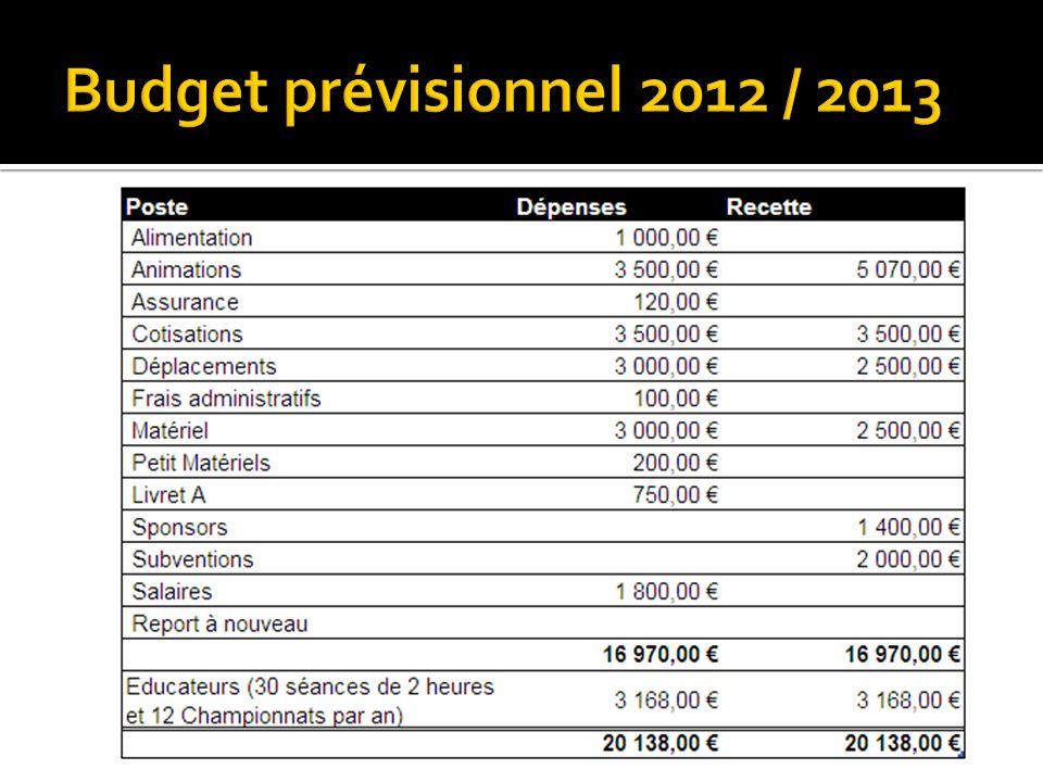 Budget prévisionnel 2012 / 2013