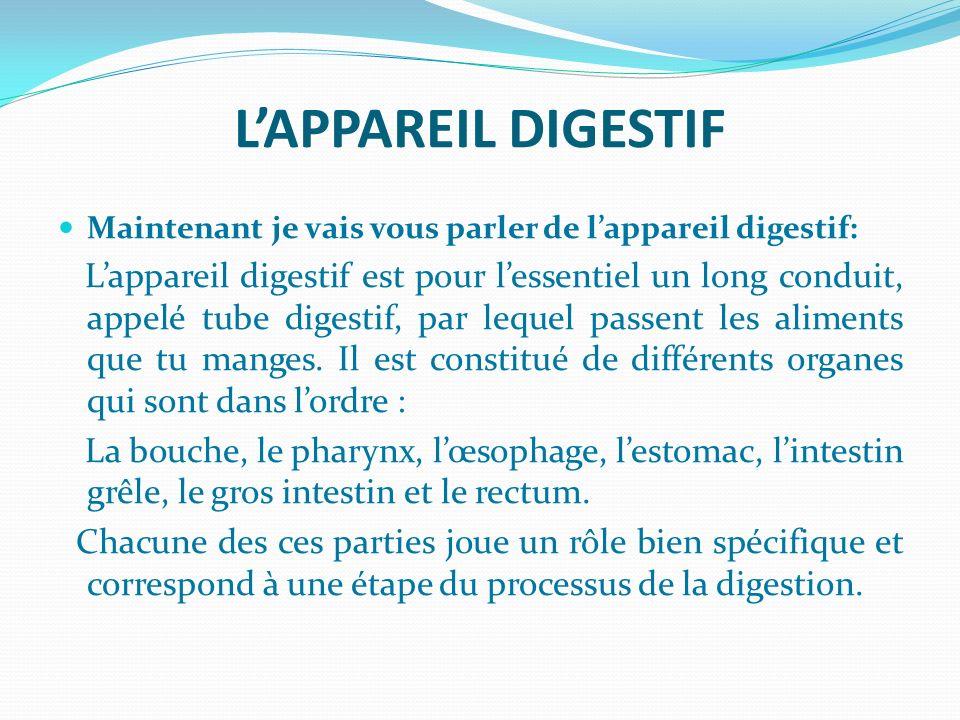 L'APPAREIL DIGESTIF Maintenant je vais vous parler de l'appareil digestif:
