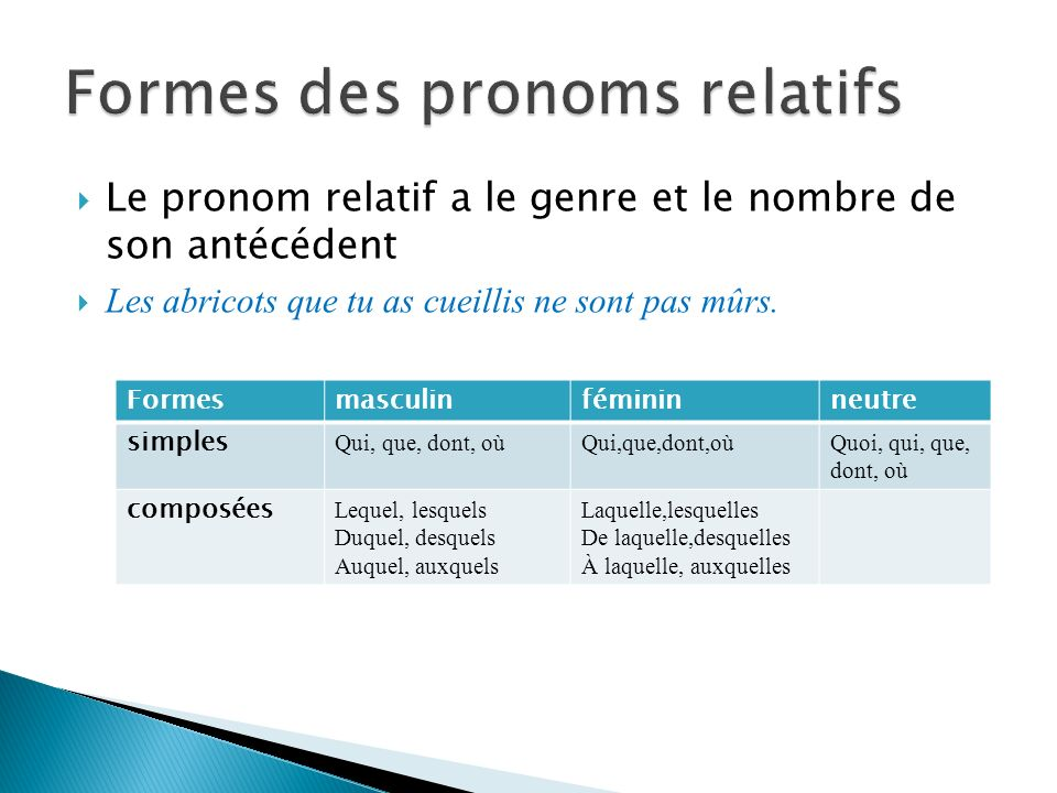 Formes des pronoms relatifs