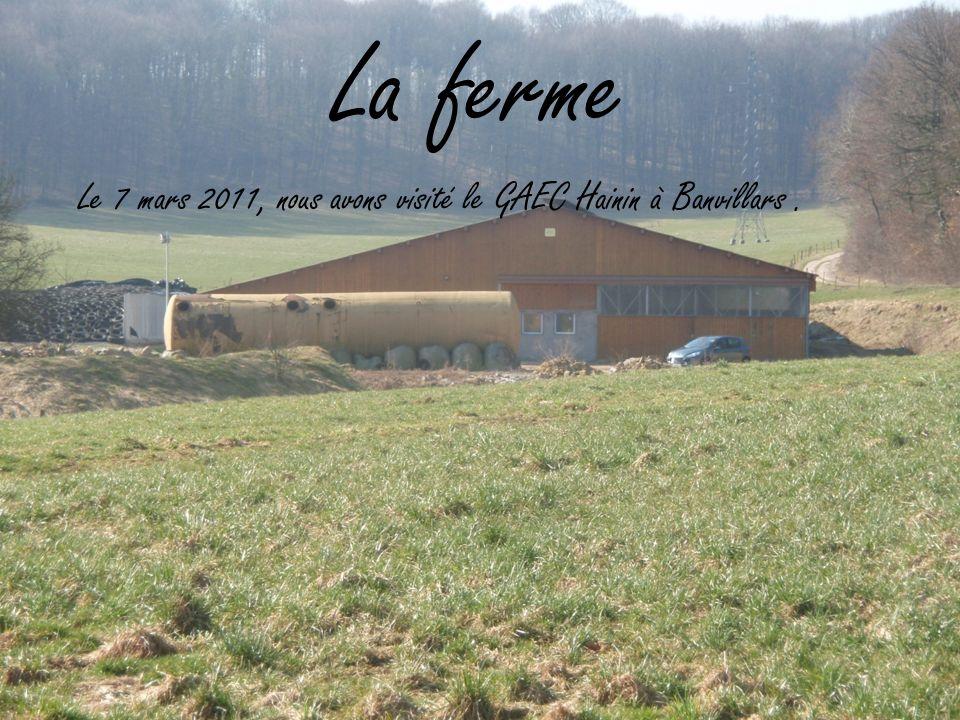 La ferme Le 7 mars 2011, nous avons visité le GAEC Hainin à Banvillars .