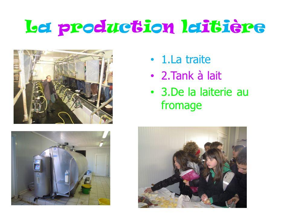 La production laitière