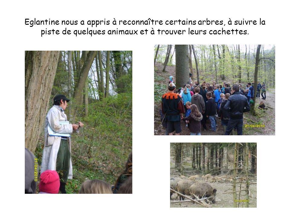 Eglantine nous a appris à reconnaître certains arbres, à suivre la piste de quelques animaux et à trouver leurs cachettes.
