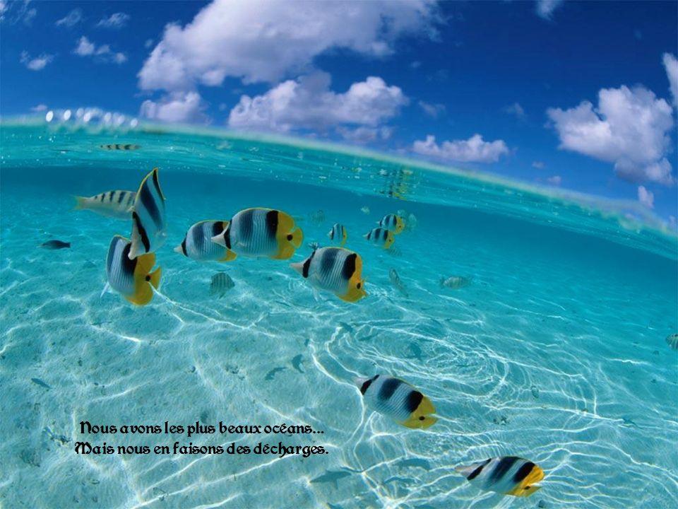 Nous avons les plus beaux océans… Mais nous en faisons des décharges.
