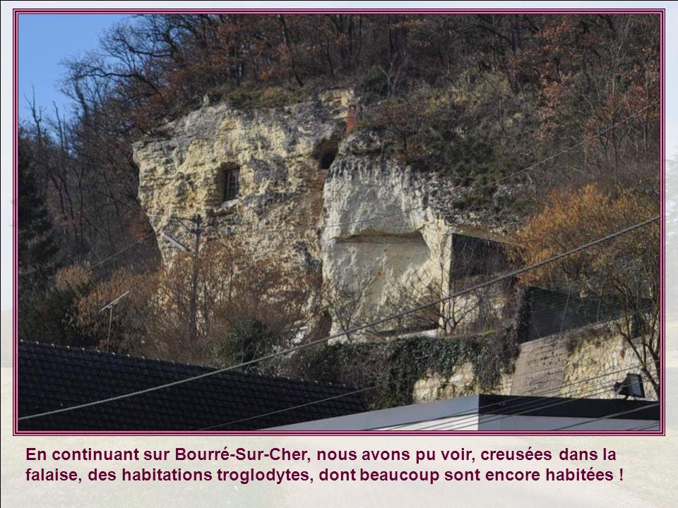 En continuant sur Bourré-Sur-Cher, nous avons pu voir, creusées dans la falaise, des habitations troglodytes, dont beaucoup sont encore habitées !