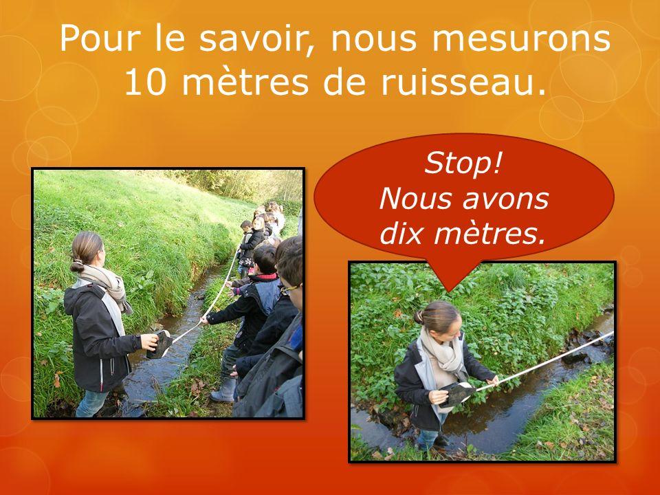 Pour le savoir, nous mesurons 10 mètres de ruisseau.