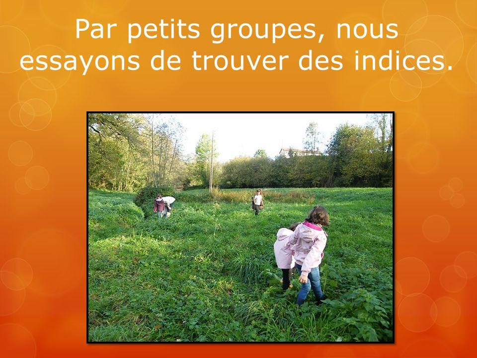 Par petits groupes, nous essayons de trouver des indices.