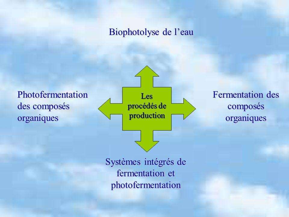 Photofermentation des composés organiques