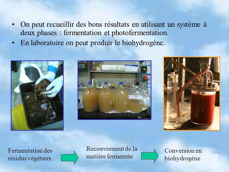 En laboratoire on peut produir le biohydrogène.