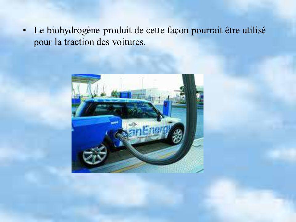 Le biohydrogène produit de cette façon pourrait être utilisé pour la traction des voitures.