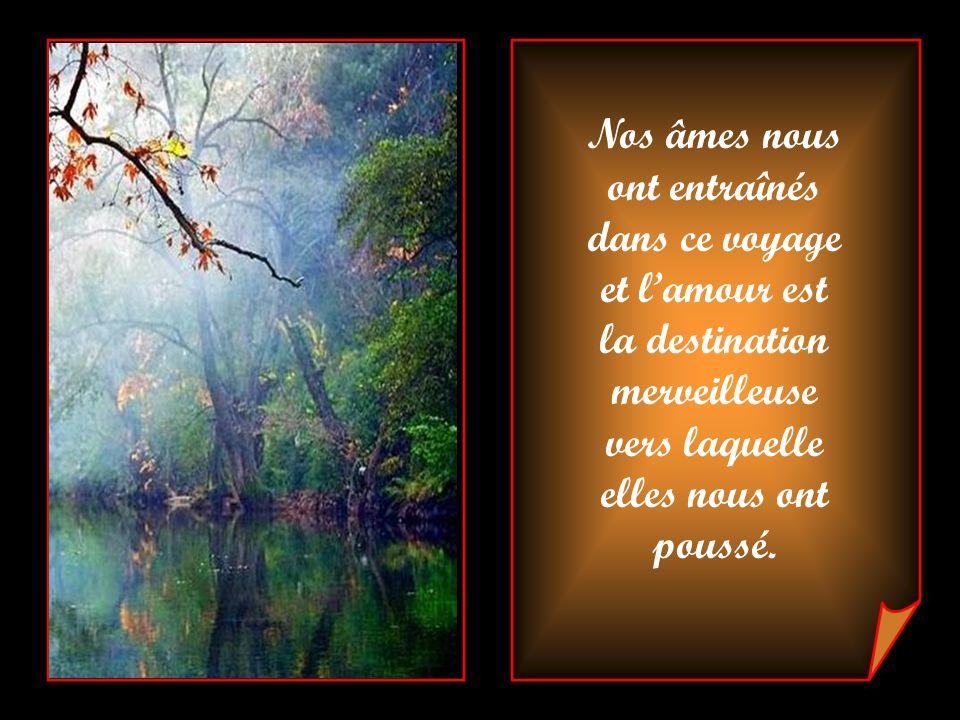 Nos âmes nous ont entraînés. dans ce voyage. et l'amour est. la destination. merveilleuse. vers laquelle.
