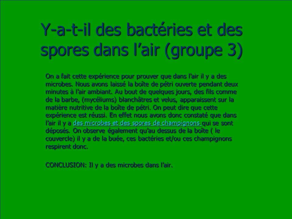 Y-a-t-il des bactéries et des spores dans l'air (groupe 3)