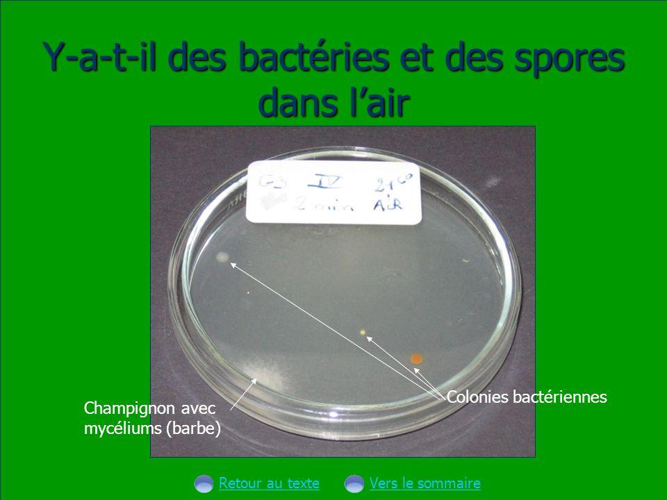 Y-a-t-il des bactéries et des spores dans l'air