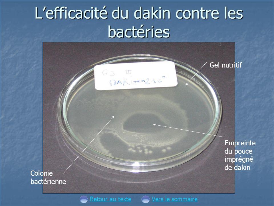 L'efficacité du dakin contre les bactéries