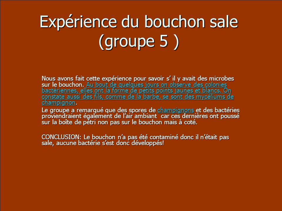 Expérience du bouchon sale (groupe 5 )