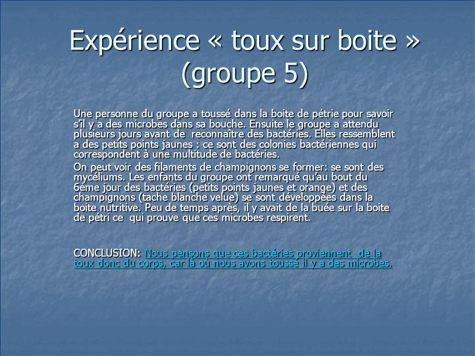 Expérience « toux sur boite » (groupe 5)