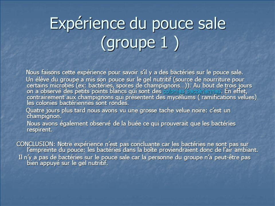 Expérience du pouce sale (groupe 1 )