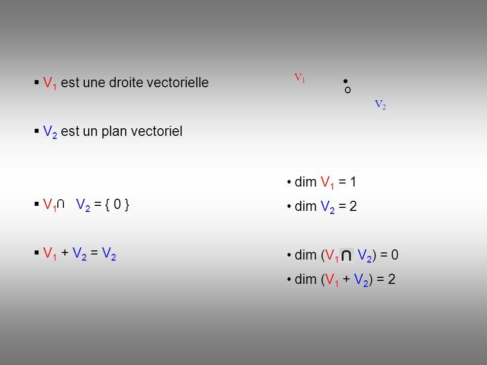 V1 est une droite vectorielle
