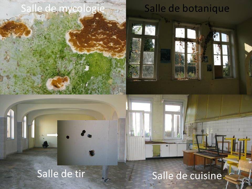 Salle de mycologie Salle de botanique Salle de tir Salle de cuisine