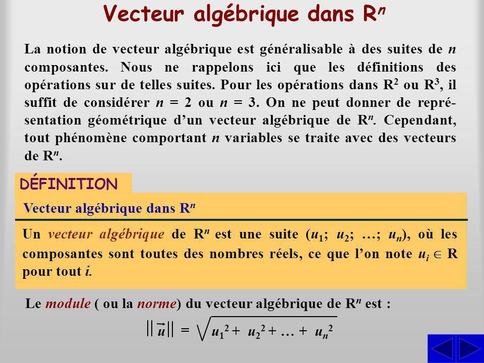 Vecteur algébrique dans Rn