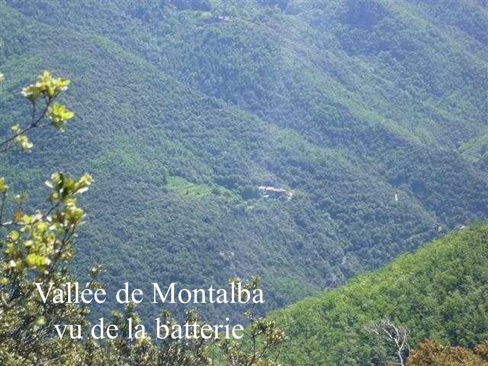Vallée de Montalba vu de la batterie
