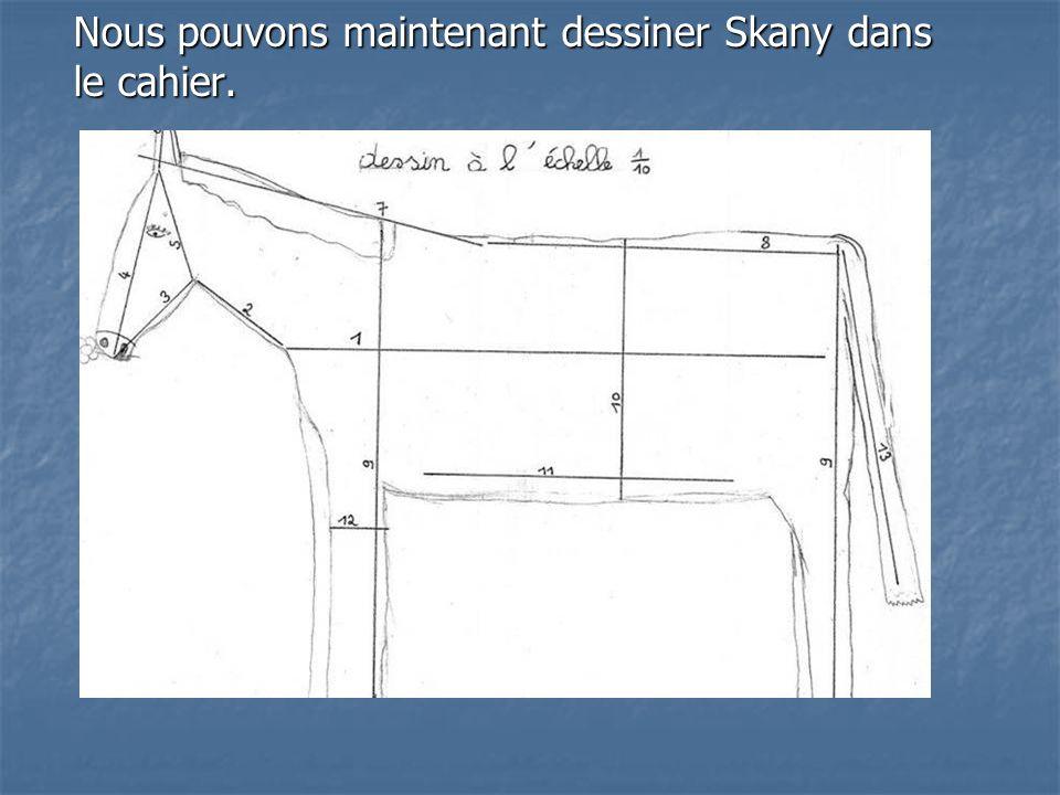Nous pouvons maintenant dessiner Skany dans le cahier.