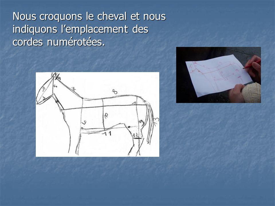 Nous croquons le cheval et nous indiquons l'emplacement des cordes numérotées.
