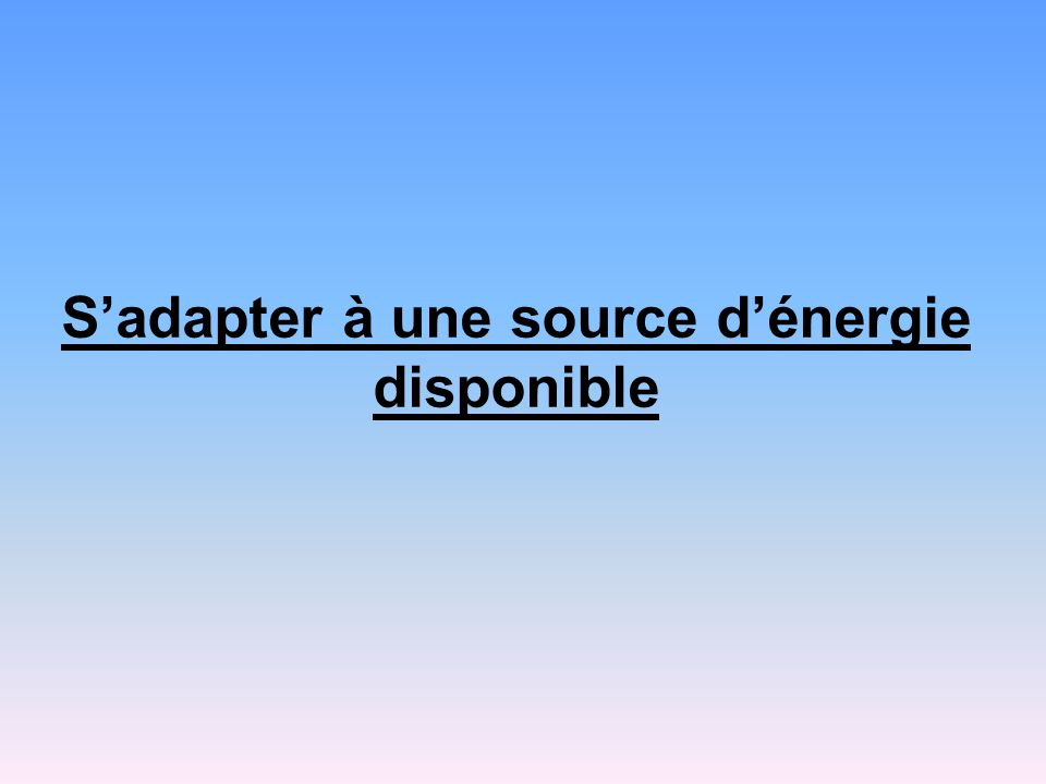 S'adapter à une source d'énergie disponible