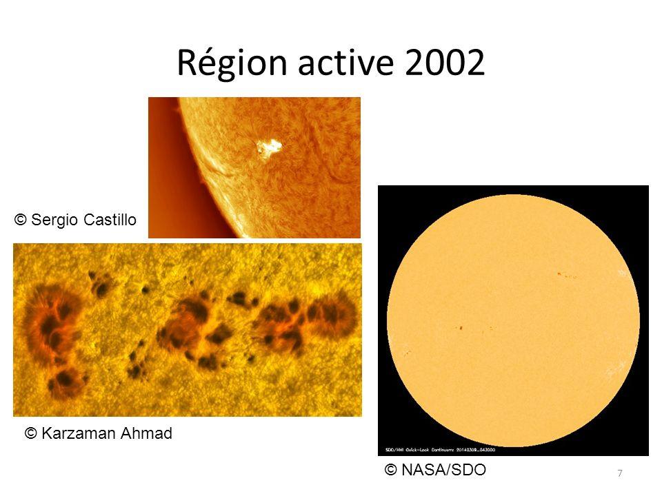 Région active 2002 © Sergio Castillo © Karzaman Ahmad © NASA/SDO