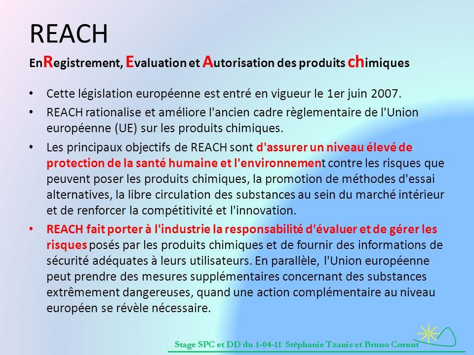 REACH EnRegistrement, Evaluation et Autorisation des produits chimiques