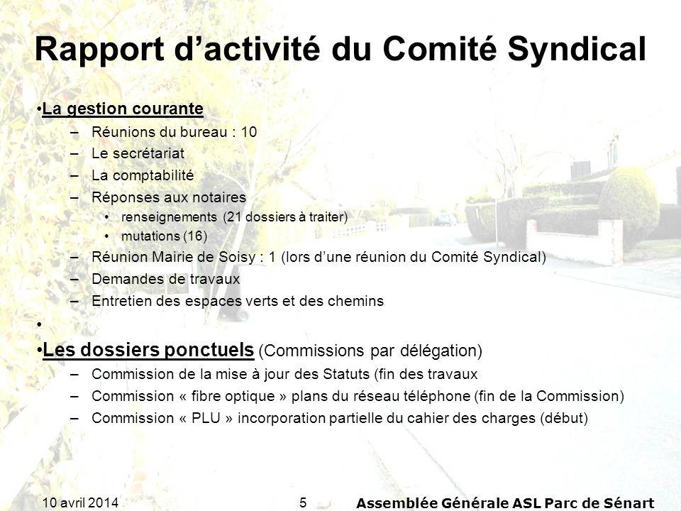 Rapport d'activité du Comité Syndical