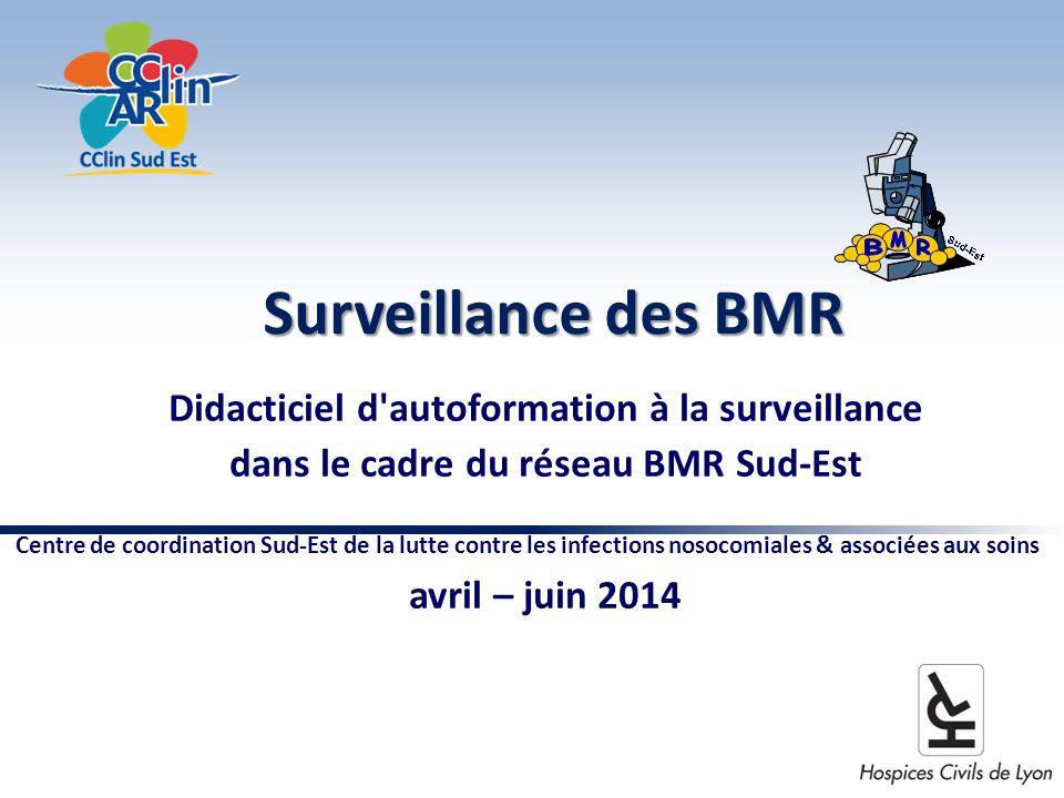 Surveillance des BMR Didacticiel d autoformation à la surveillance