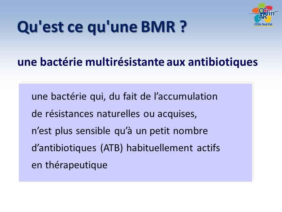 Qu est ce qu une BMR une bactérie multirésistante aux antibiotiques