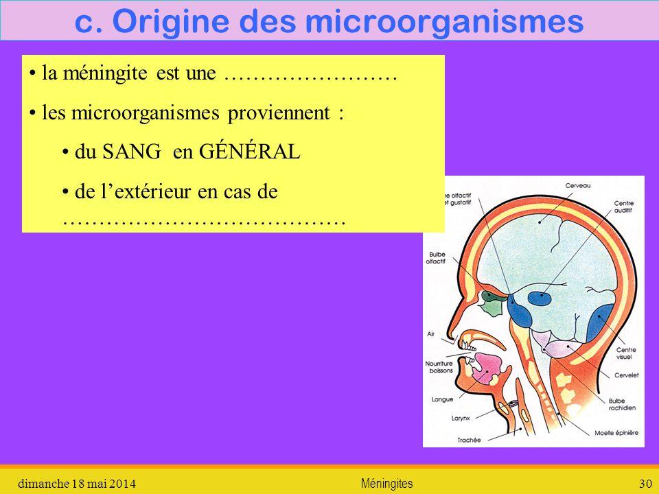 c. Origine des microorganismes