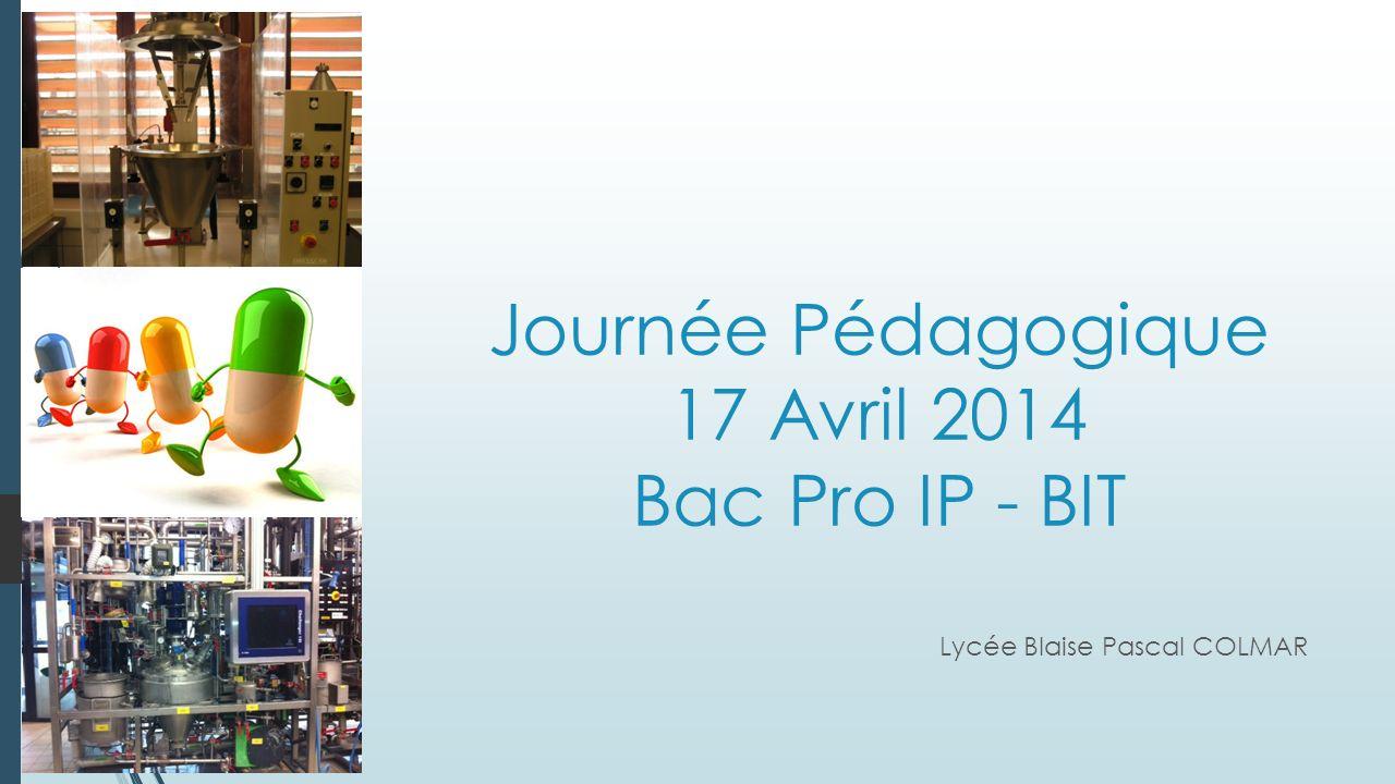 Journée Pédagogique 17 Avril 2014 Bac Pro IP - BIT