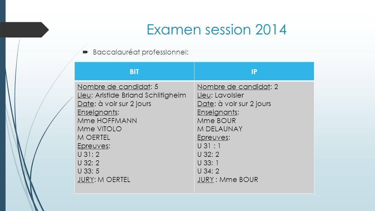 Examen session 2014 Baccalauréat professionnel: BIT IP