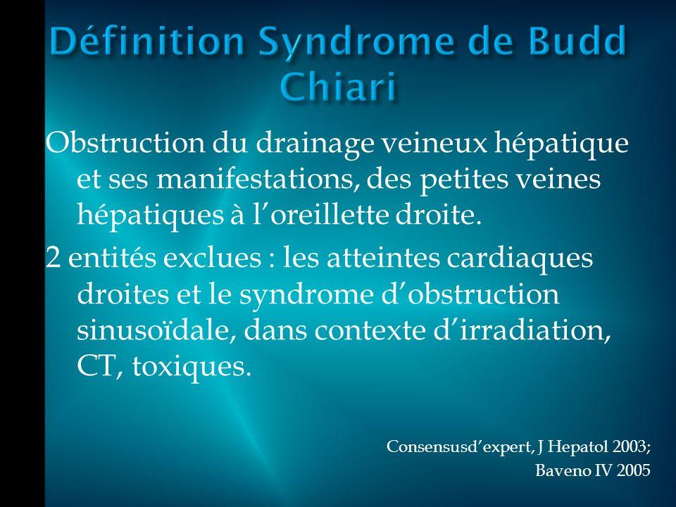 Définition Syndrome de Budd Chiari