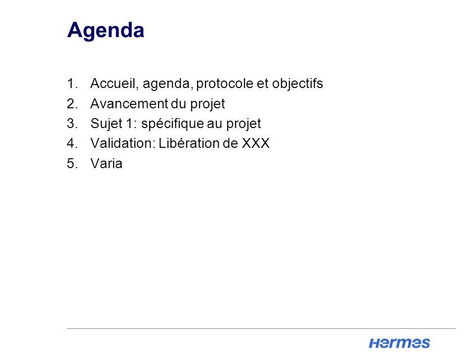 Agenda Accueil, agenda, protocole et objectifs Avancement du projet