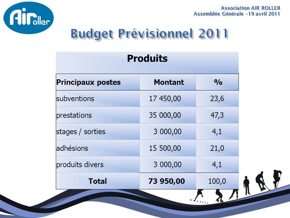 Budget Prévisionnel 2011 Produits Principaux postes Montant %