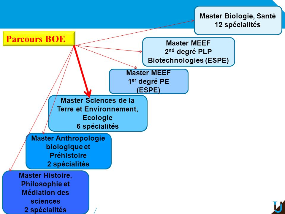 Parcours BOE Master Biologie, Santé 12 spécialités