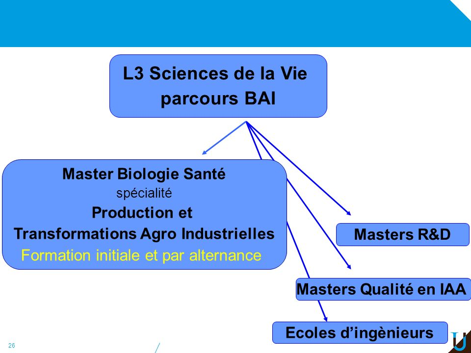 Transformations Agro Industrielles
