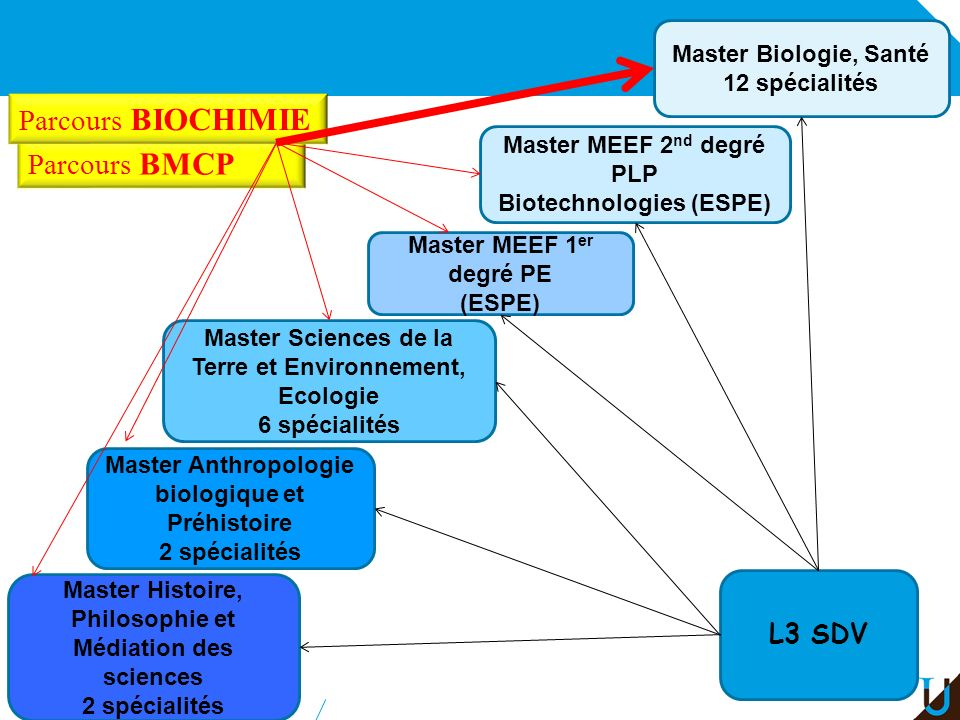 Parcours BIOCHIMIE Parcours BMCP L3 SDV Master Biologie, Santé