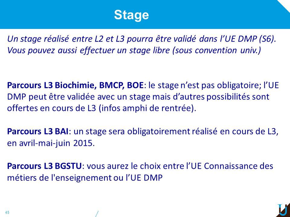 Stage Un stage réalisé entre L2 et L3 pourra être validé dans l'UE DMP (S6). Vous pouvez aussi effectuer un stage libre (sous convention univ.)