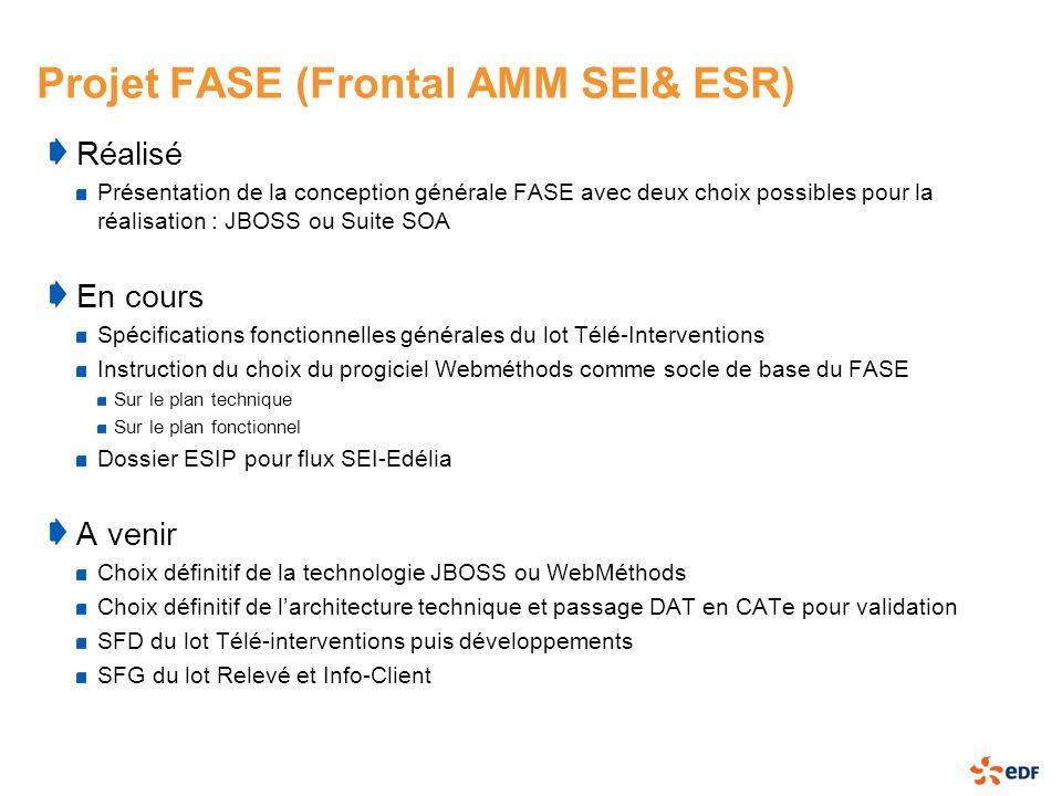Projet FASE (Frontal AMM SEI& ESR)